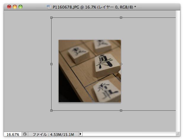 Ps-trim-05-s.jpg